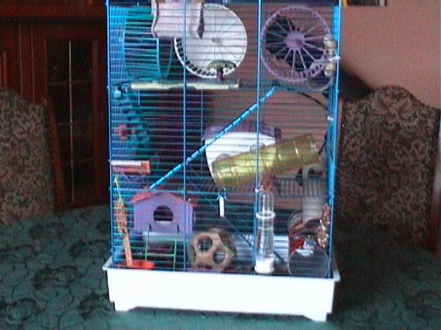 cage. Black Bedroom Furniture Sets. Home Design Ideas